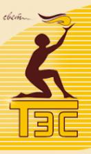 Логотип компании ТЭС