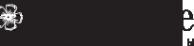 Логотип компании Paolo Conte